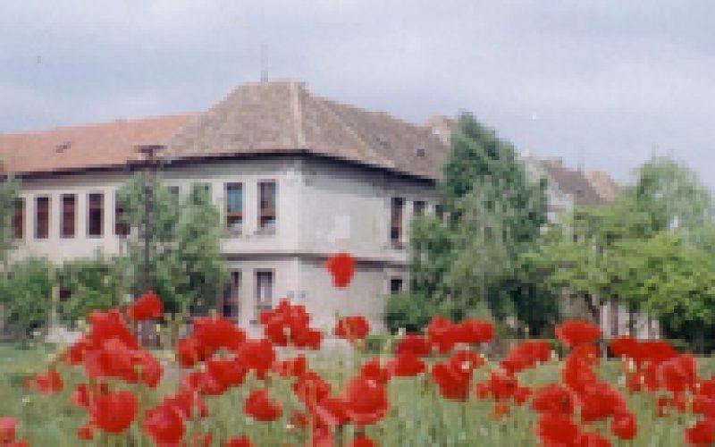 Stogodišnjica škole u Senti