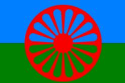 (Srpski) Neophodna standardizacija romskog jezika