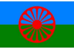 (Srpski) Svetski dan Roma: Vidljivi rezultati primene afirmativnih mera u Vojvodini