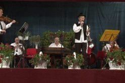Za očuvanje mađarske kulturne baštine u Vojvodini