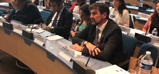 (Srpski) Bošnjak u Savetu Evrope predstavio novo manjinsko zakonodavstvo Srbije