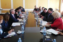 Pragmatičnim pristupom do poboljšanja položaja manjina u Rumuniji i Srbiji