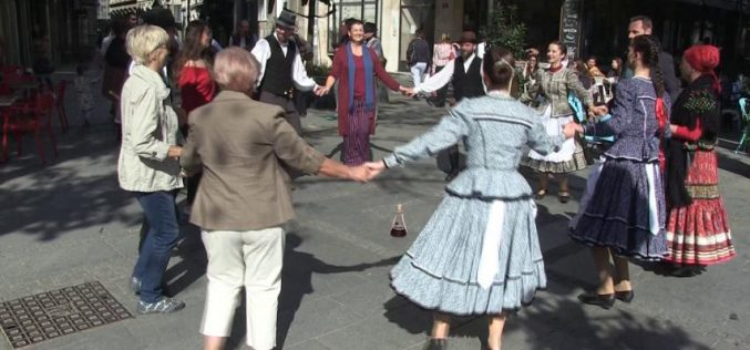 Mađarska kultura u srpskoj prestonici